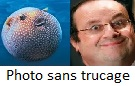 Fran�ois Hollande humour, poisson globe